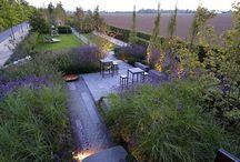 Garden / parks, horticulture, garden arrangements