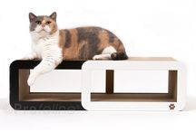 modern cardboard furniture for cats
