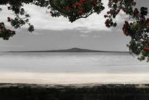 North Shore landscapes