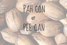 Pecan Recipes / great recipes for Georgia Pecans