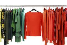 Fashion Secrets for Professional Success / 0