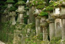 japaneese Lanterns