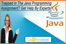 Trapped in The Java Programming Assignment?