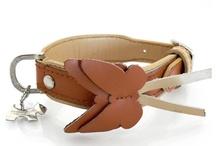 Dog Collar & leash / スマイヌで販売中のイヌたちの首もとをオシャレに機能的に演出する首輪&リードなどをご紹介させてください。