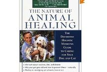 Holistic Animal Health Books / Books for anyone who loves animals & who wants to take a more natural approach to their health and wellbeing