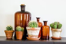 LOOK: Indoor plants / Bringing the great outdoor inside - my compensation for not having a garden