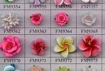 set fiori