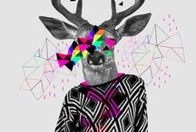 Designs / by shankspot -
