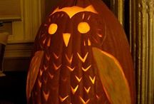 halloweencarving / by Sarina De Jonge