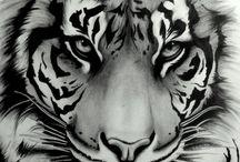 animale dibujos