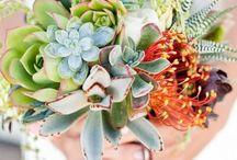 Wedding Flowers - red/yellow/oranges