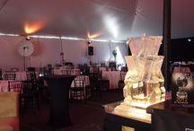 Special Events by Picasso's Catering Company / Very Special Events designed and catered by Picasso's Catering Company. Full-Service Event Planning, Catering, Bar and cocktail planning, Party Rentals : Tents, Chairs, Ice Luge and Drink Sculptures.