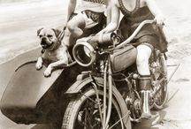 Sidecars,motorbikes,quadbikes,ancient chariots.