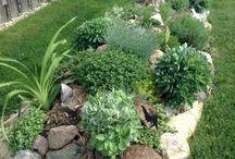 Corner Garden
