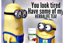 Herbivore / Everything and Anything Herbalife!!!