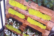 pallets (Construir con pallets) / Muebles,jardineras,ideas para hacer en casa con pallets.