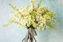 Floral/decor / by Whyte Walls