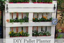 palet garden