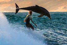 beach & surf <3