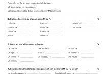 Bilans Français grammaire