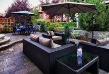 Back Yard / Back yard landscaping and renos