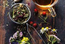 Herbs | Bylinky