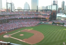 St Louis Cardinals / by Donna Rainwater