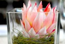 South African Inspired Centerpieces