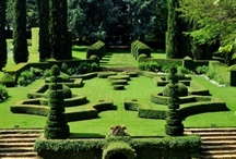 LANDSCAPING - MISC / Random ideas in landscaping