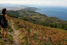 Hike the Camino de Santiago