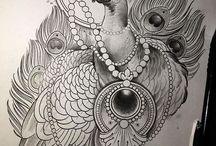 pavão drawing