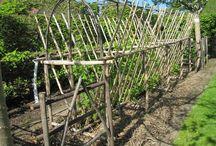 Prieuré d'Orsan - Les Jardins