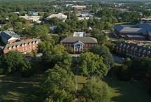 Georgia Southern! / We love Georgia Souther University!
