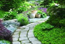 Garden and garden whimsy / by Marmee P