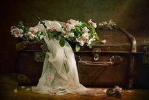 1880's Prairie Mail Order Bride
