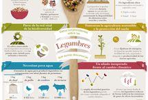Alimentos para o ensino primario