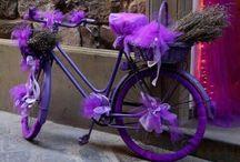 motos carros bicys
