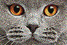 Pixel Art - Animals / Pixel Art masterpieces with animals subjects. Everyone can create a Pixel Art picture with Quercetti pegs. For more info visit https://www.quercettistore.com/it/giocattoli/pixel-art https://www.quercettistore.com/it/downloads/quercetti-art/9 You can also create your portrait by uploading your picture into www.quercettiart.it