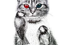 Cat / Cat