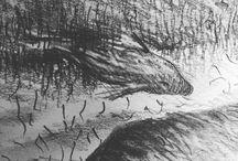 my work Cuckoo wrasse #drawing #sketch #sketchbook #draw365