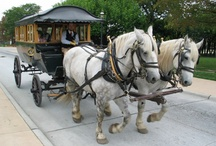 Greenfield Village / by The Henry Ford