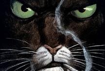 Black Sad, meow!