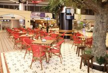 Atatürk Havalimanı İç Hatlar Terminali Food Court Alanı - İstanbul / Sandalyeci