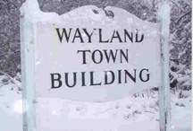 Wayland Scenes
