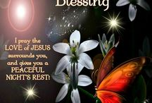 Evening Blessed