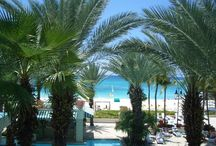Place - GRAND CAYMAN / Explore the Grand Cayman