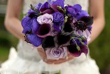 Wedding Ideas / by Lindsey Borgwardt