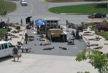 The Walking Dead at CEPAC / by Cobb Energy Centre