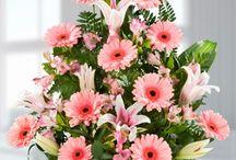 arreglos de flowers / by Mare Roz