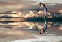 AQA 2014 Mirror Images Art